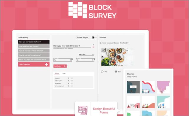 BlockSurvey